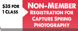 capture-spring-non-memberregistrations-button