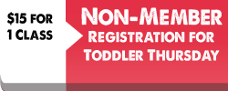 non-member-registrationtoddlers-button